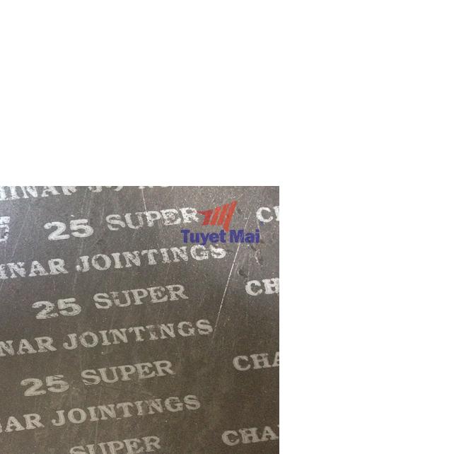 ron gioăng CJ-25